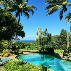 a Maui home with an ocean view pool - Haiku, luxury homes for sale