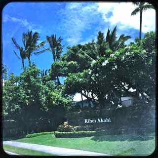 bank owned condos for sale on Maui
